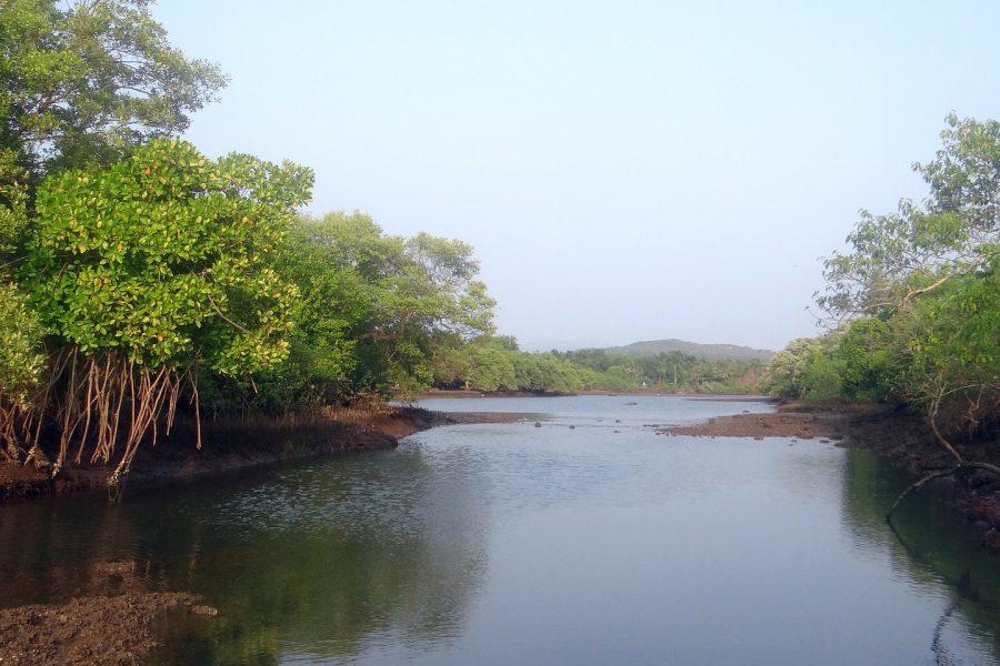 Troisième Challenge pêche 2016 – Rivière Moustik