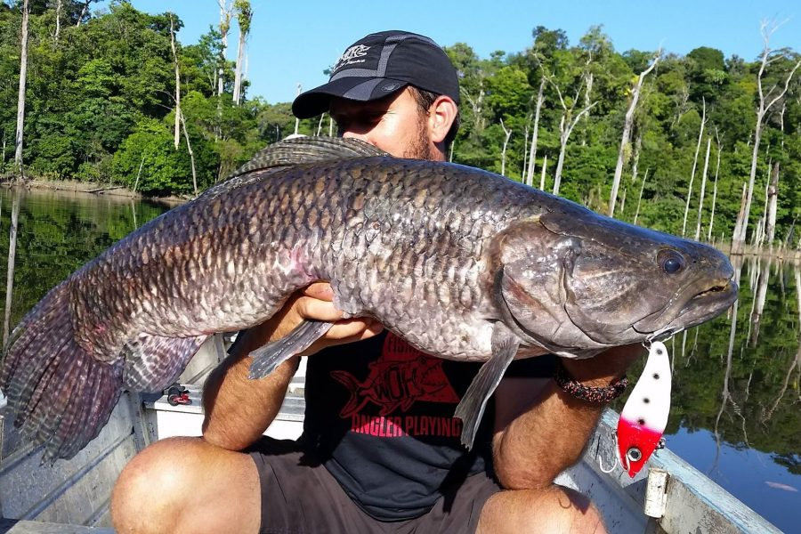 Voyage de pêche en Guyane Francaise 2016