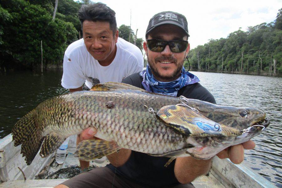 Voyage de pêche en Guyane Française 2015