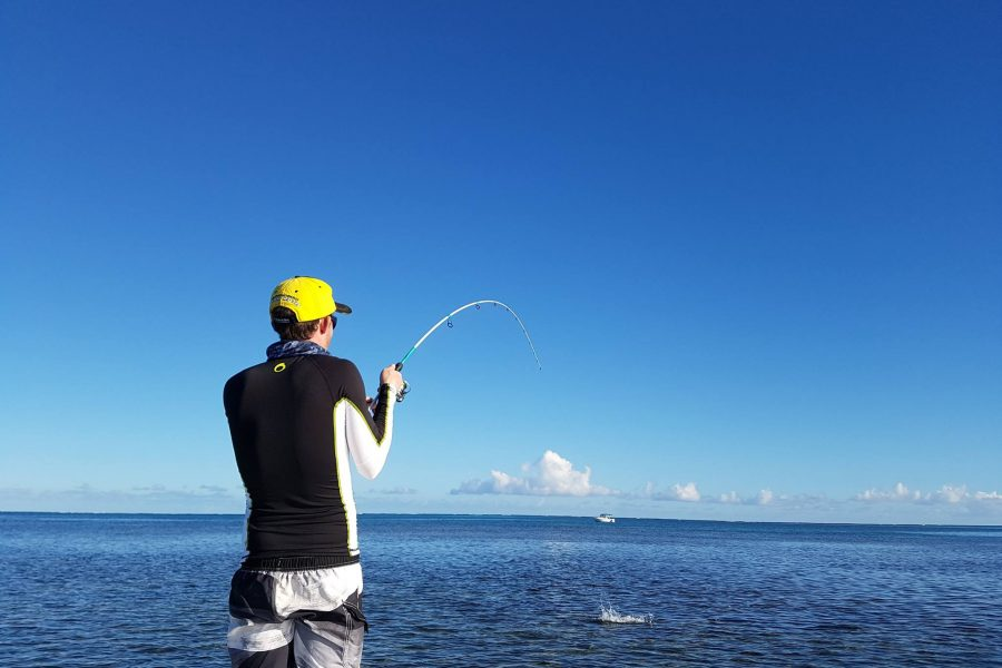 Pas besoin d'être «moucheur» pour en découdre avec un BONE FISH