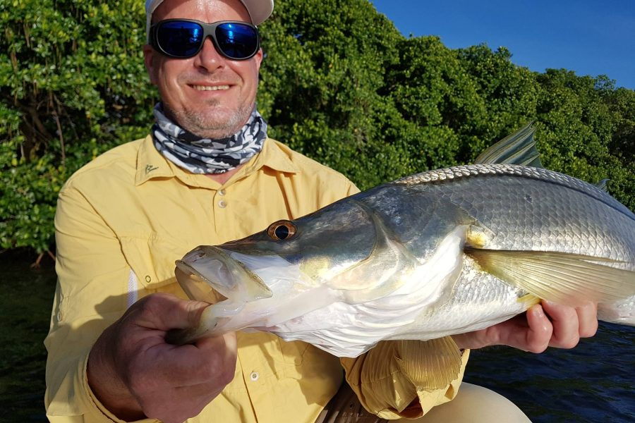 Pêche du Snook dans la mangrove