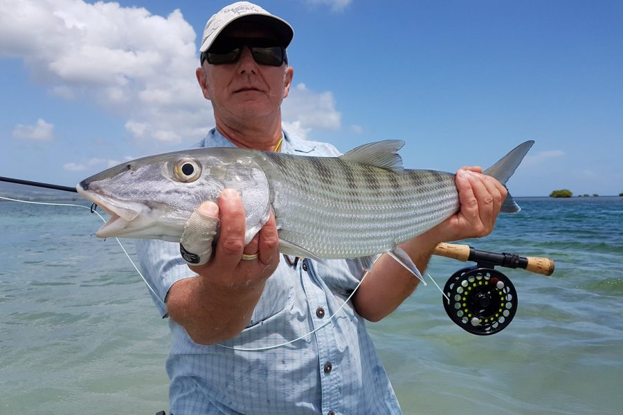 Fly Fishing / Pêche du BoneFish à la mouche en Guadeloupe