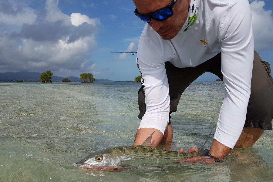 Ouverture de la pêche du Bone-Fish en Guadeloupe
