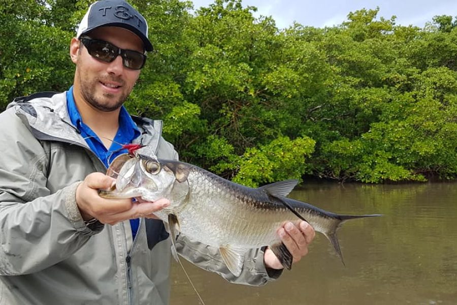Fly fishing en Guadeloupe à la recherche des Tarpons