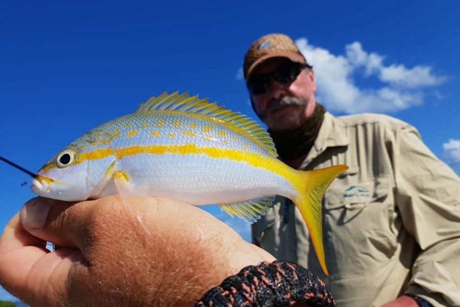 Quand le pêcheur s'applique, les poissons rentrent !!