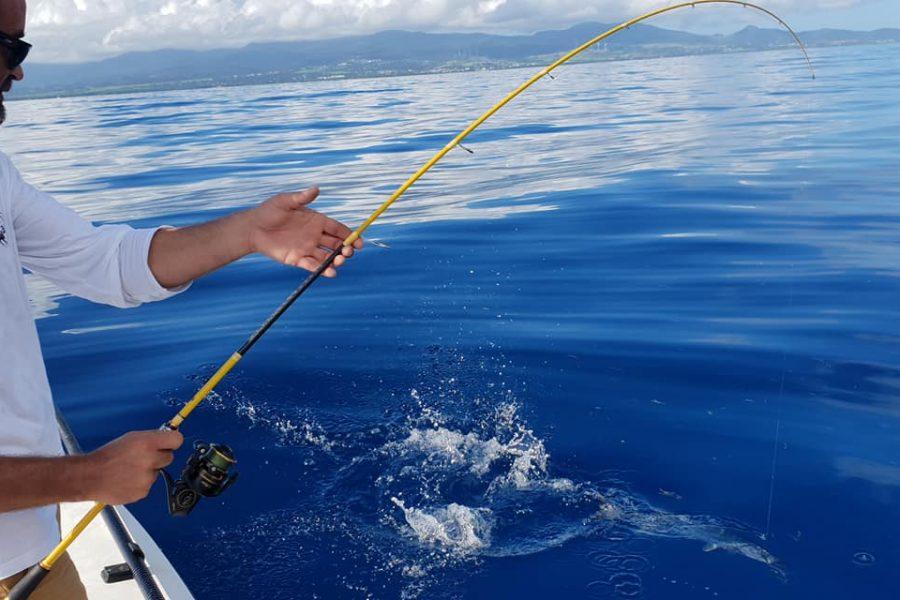 Super Guidage derrière la barrière de corail en SKIFF