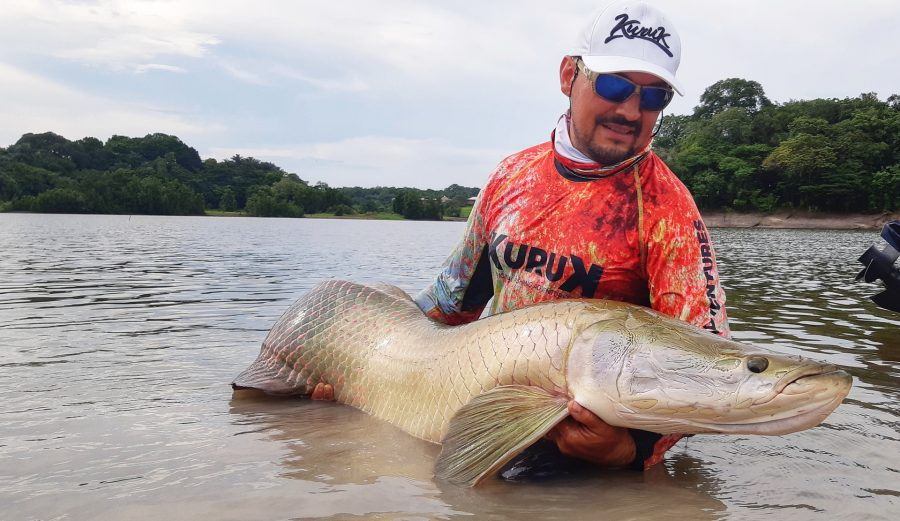 Pêche de l'arapaima ou pirarucu en amazonie brésilienne