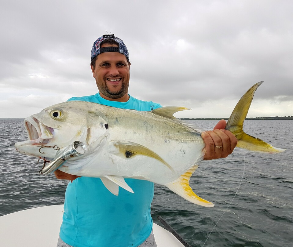 jack crevalle from Guadeloupe