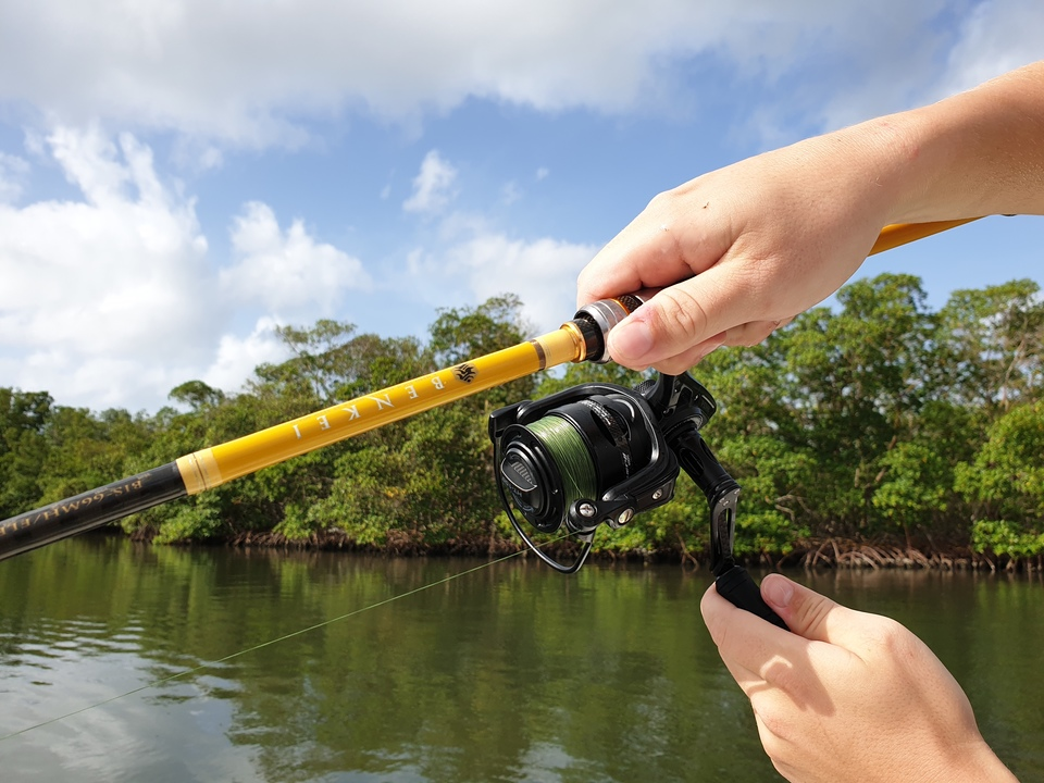 guadeloupe spinning fishing tackle