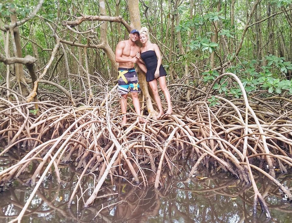Envie d'une pause en mangrove ?