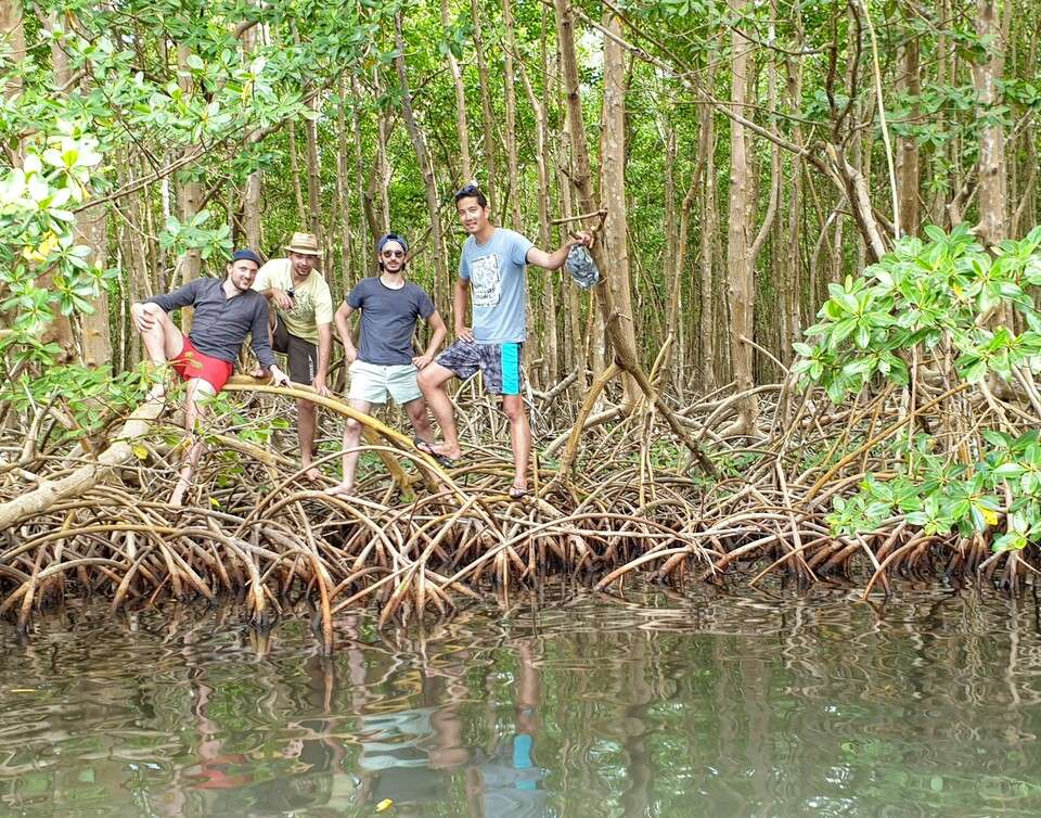 Fishing the mangrove with group