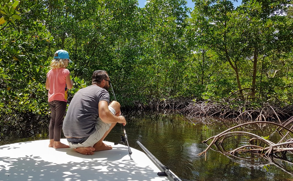 Mangrove Fishing in Guadeloupe