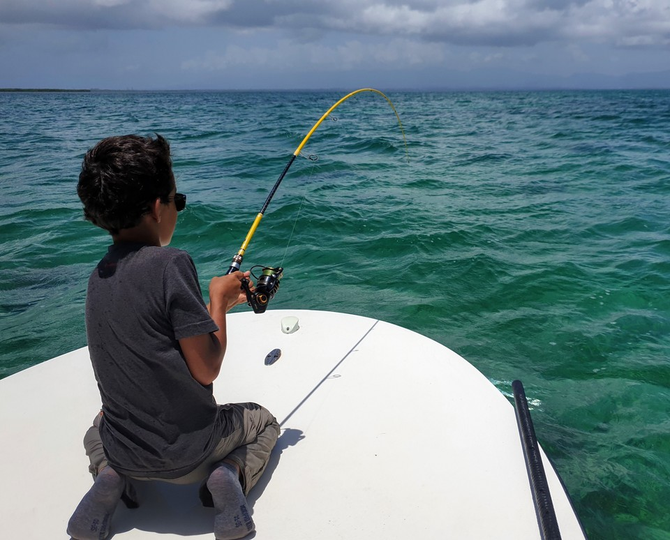 Benkei FLE en action. Matériel de pêche aux leurres pour la Guadeloupe.