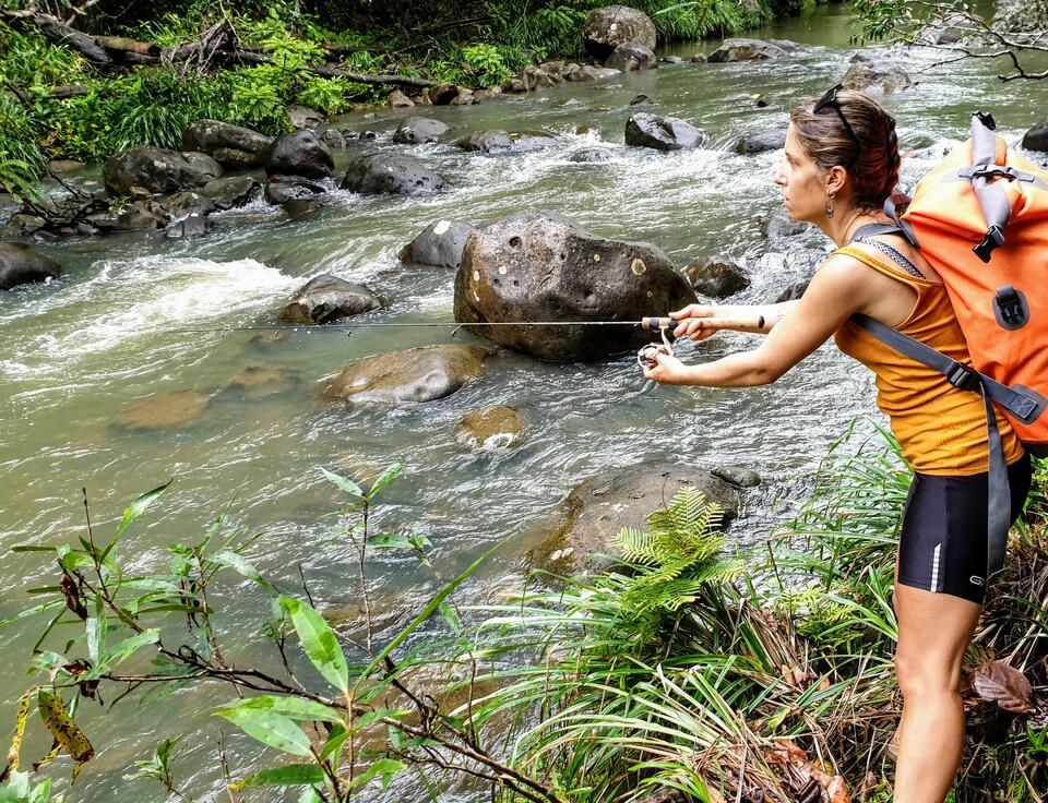 La pêche en eau douce en Guadeloupe ressemble beaucoup à la traque de la truite fario en petite rivière.