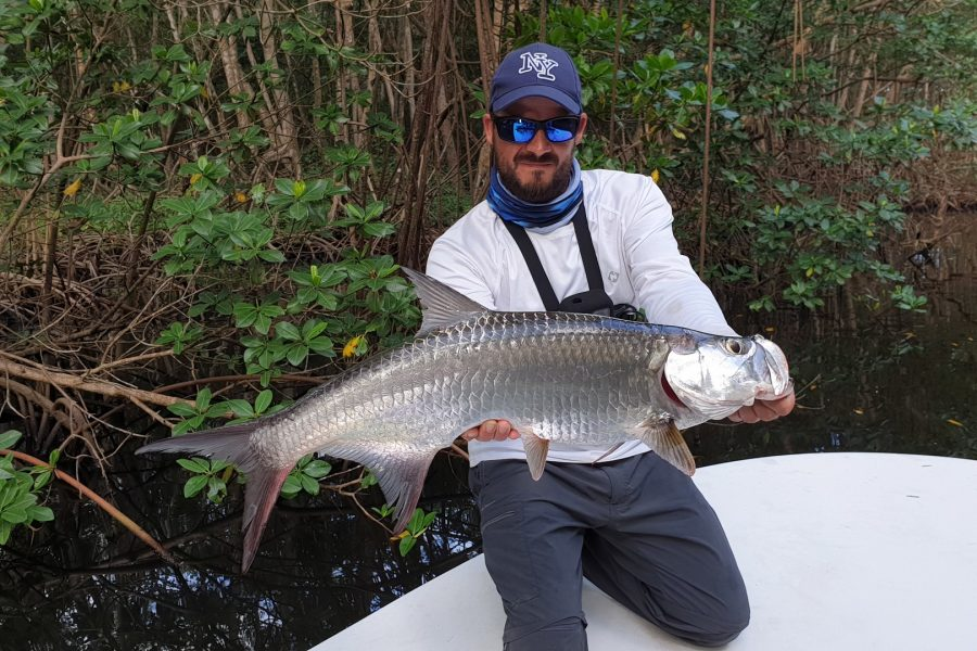 Scarna Fishing Episode 5 : Pêche du baby tarpon en mangrove de Guadeloupe