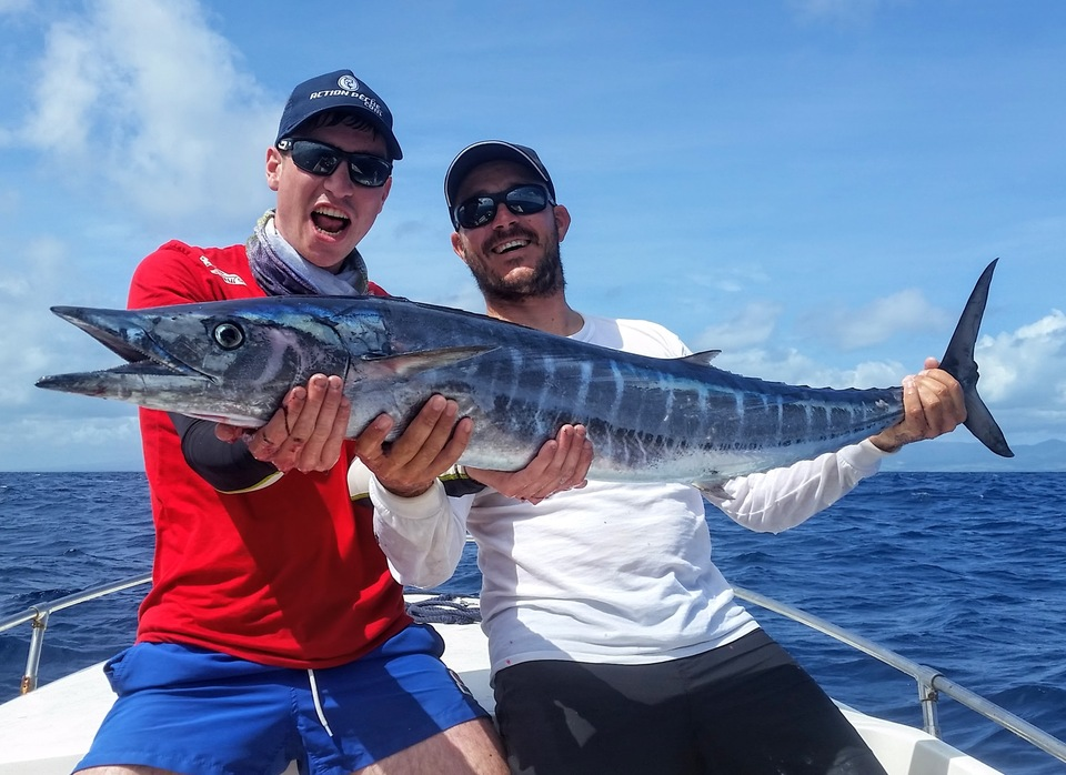 wahoo from guadeloupe